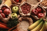 Vegetariano radical