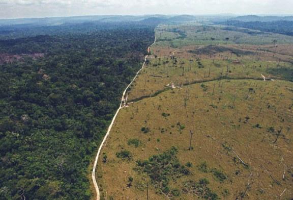 Imigrantes poderão opinar sobre os efeitos no clima do Brasil