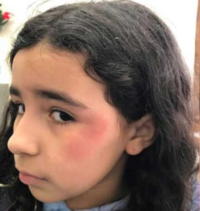 Foto30 Lauren Julua Murgia Filha de brasileira é vítima de bullying na escola em NY