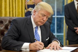 Foto10 Donald Trump 266x179 Home page