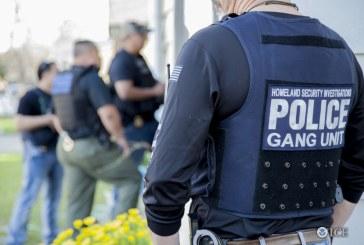 Furacões Harvey e Irma fazem DHS cancelar batidas migratórias