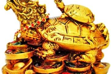 A tartaruga de Krishna