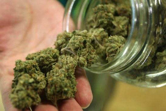 Legalização pode baixar preço da maconha em NJ