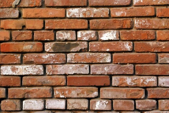 muro Por fim, a salvo