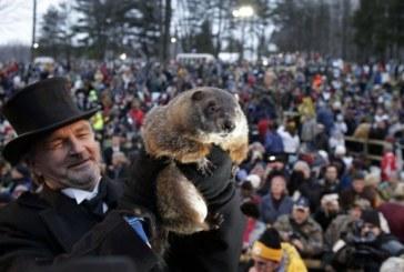 PA: Marmota Phil indica mais 6 semanas de inverno