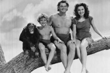 Mim Tarzan, You Tube
