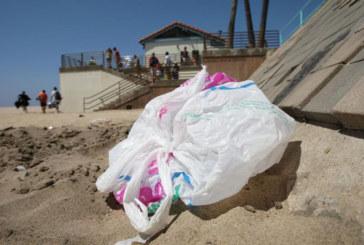 Polêmica: Point Pleasant Beach quer banir sacas plásticas