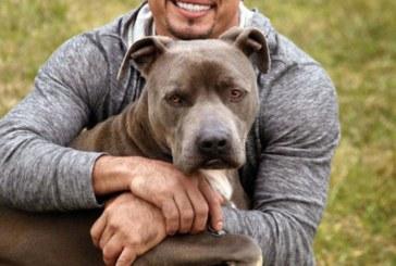 """Milionário, """"adestrador de cães"""" cruzou a fronteira dos EUA com US$ 100"""