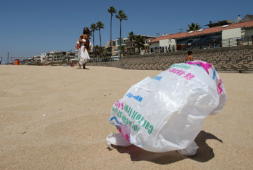 Mais um condado em NJ quer proibir uso de sacas e canudos plásticos