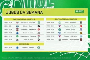 Cruzeiro e Palmeiras decidem quem será um dos finalistas da Copa do Brasil