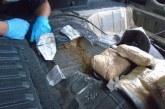 Patrulheiros confiscam US$ 1 milhão em heroína no Arizona