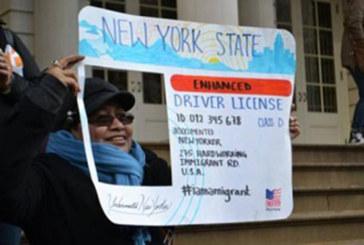 Ativistas criam fundo em prol de carteiras para indocumentados em NY