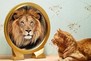 Melhorando a Auto-Imagem