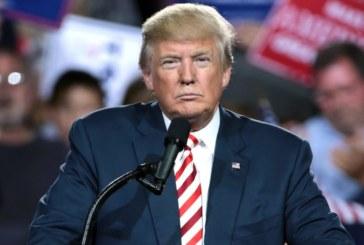 """Trump quer """"despejar"""" indocumentados em cidades-santuário"""
