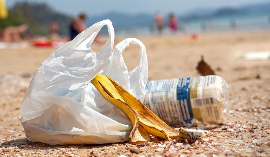 Foto19 Saca e garrafa plasticas NJ quer proibir sacolas de plástico e papel em supermercados
