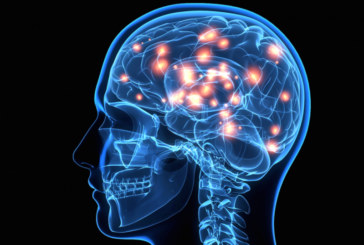Vias de acesso ao cérebro