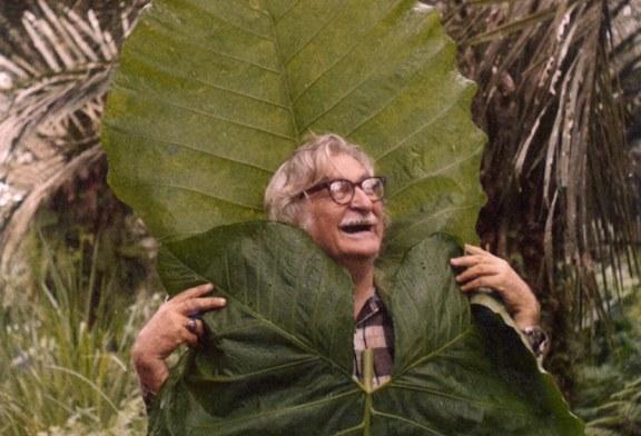 Jardim Botânico presta tributo a Burle Marx em NYC