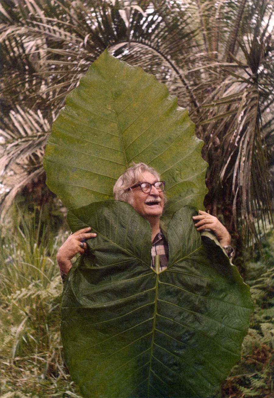 Foto11 Roberto Burle Marx  Jardim Botânico presta tributo a Burle Marx em NYC