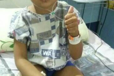 Brasileirinho com leucemia busca doador de medula óssea compatível