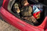 Imigrantes são descobertos em porta-malas de carro na fronteira