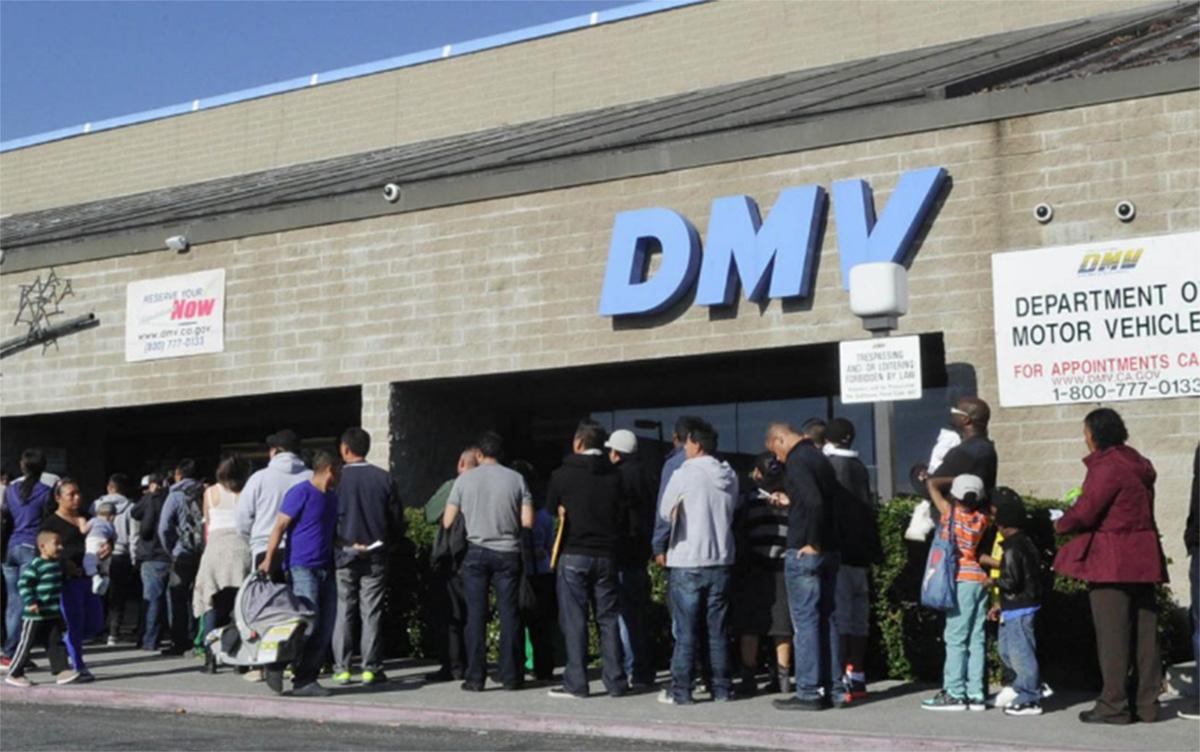 Foto11 Fila no DMV Falha no sistema atrasa emissão de carteiras para indocumentados em NY