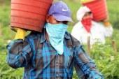 Câmara aprova proposta que permite indocumentados lutarem por direitos trabalhistas