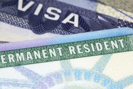 Foto19 Green Card 266x179 Home page