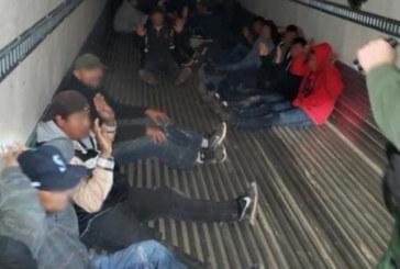 Motorista com carteira falsa tenta contrabandear 26 imigrantes