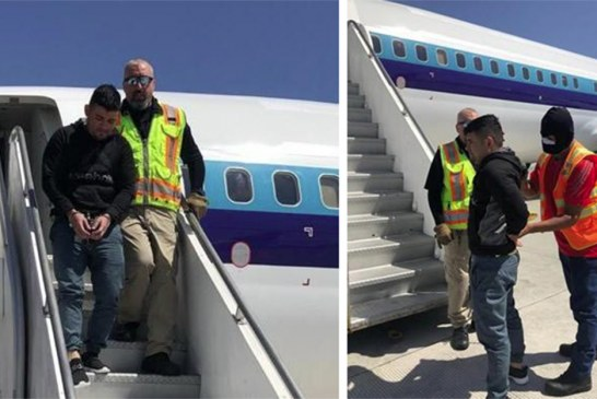 ICE deporta pela 2ª vez membro de gangue de rua foragido