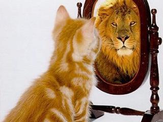 Autoconhecimento – A alavanca para uma vida plena